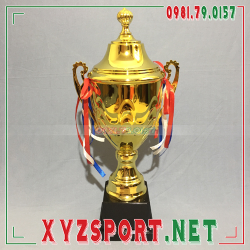 Cup Bóng Đá Mã ALB1318 4
