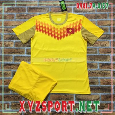 Áo Đội Tuyển Việt Nam 2020 Training 13 Màu Vàng 6