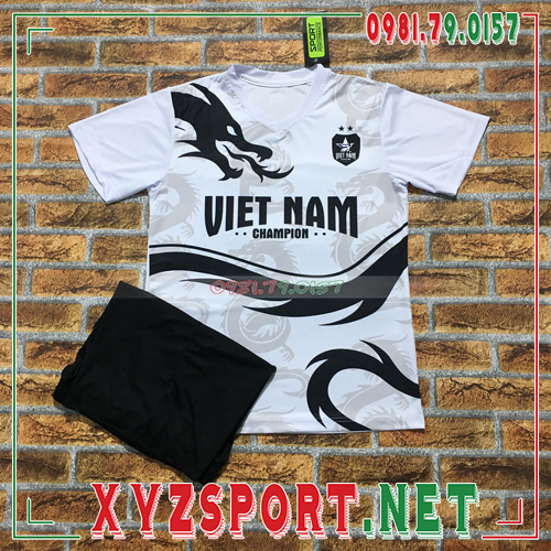 Áo Đội Tuyển Việt Nam 2020 Training 4 Màu Trắng 1